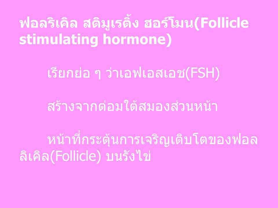 ฟอลริเคิล สติมูเรติ้ง ฮอร์โมน(Follicle stimulating hormone)