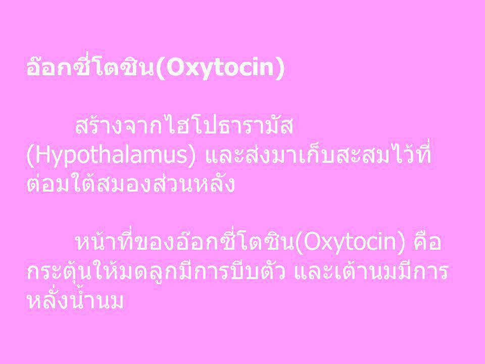 อ๊อกซี่โตซิน(Oxytocin)