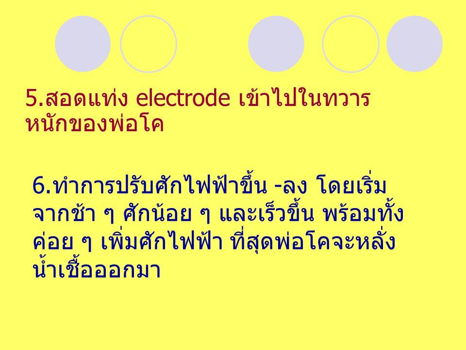 5.สอดแท่ง electrode เข้าไปในทวารหนักของพ่อโค