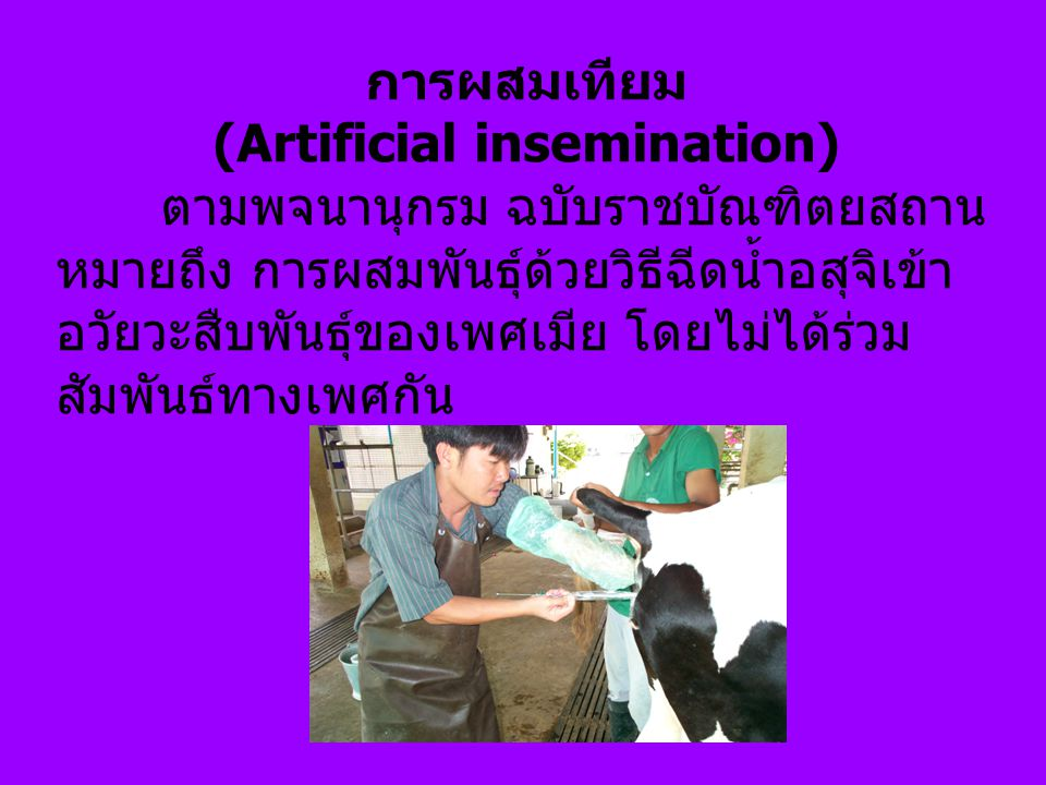 (Artificial insemination)