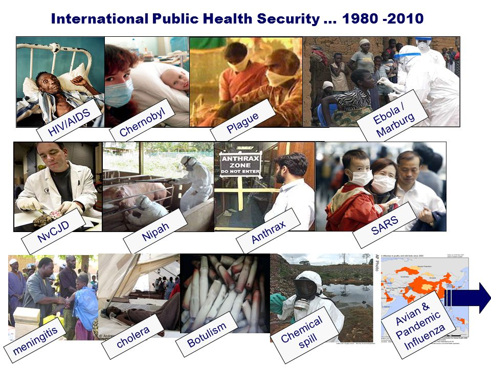 International Public Health Security … 1980 -2010
