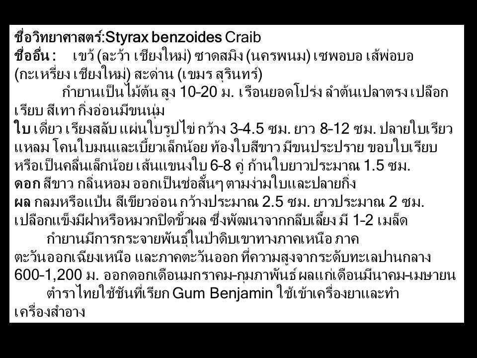 ชื่อวิทยาศาสตร์:Styrax benzoides Craib