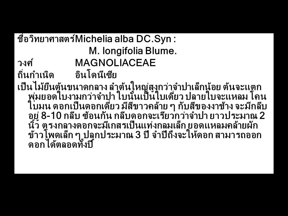 ชื่อวิทยาศาสตร์ Michelia alba DC.Syn :