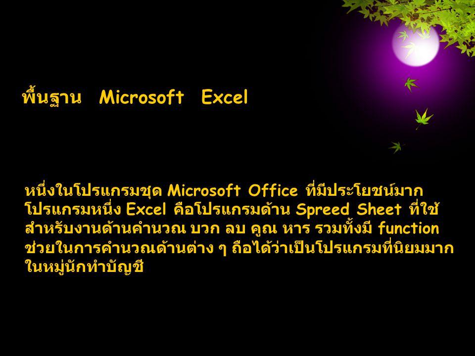 พื้นฐาน Microsoft Excel