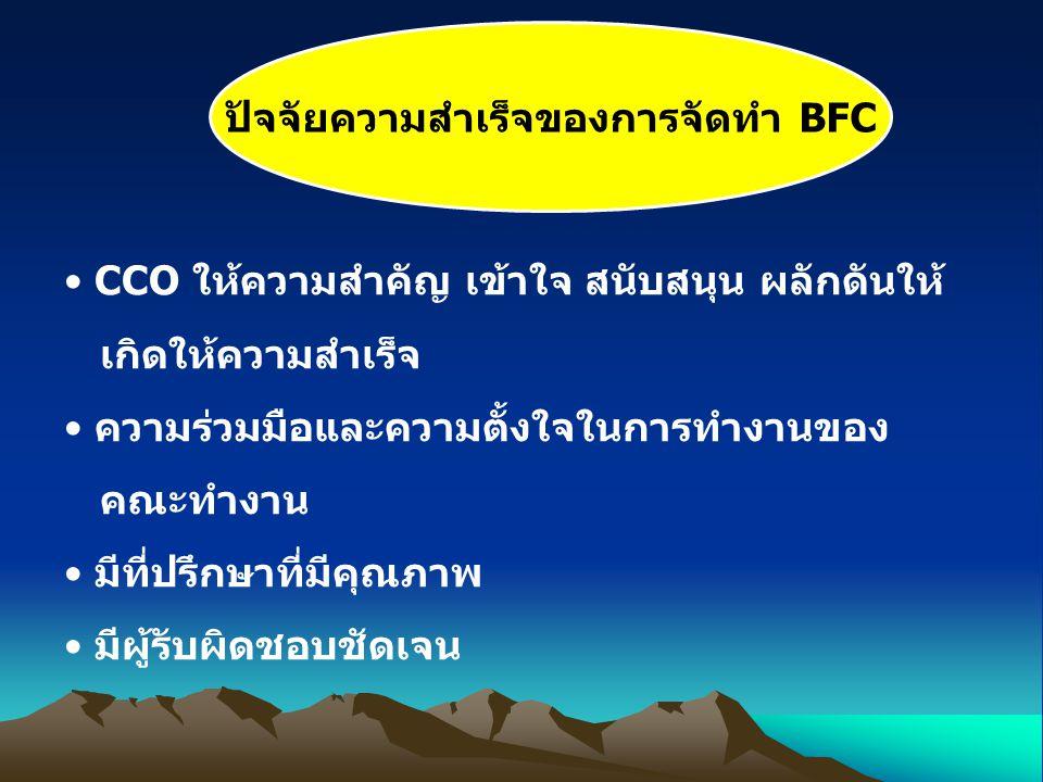 ปัจจัยความสำเร็จของการจัดทำ BFC