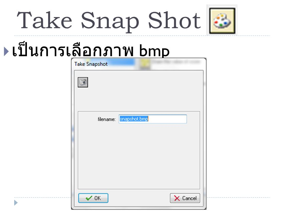 Take Snap Shot เป็นการเลือกภาพ bmp