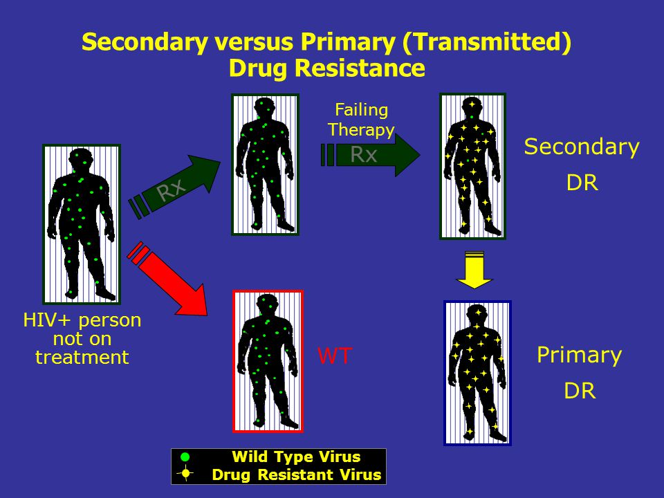 Secondary versus Primary (Transmitted) Drug Resistance