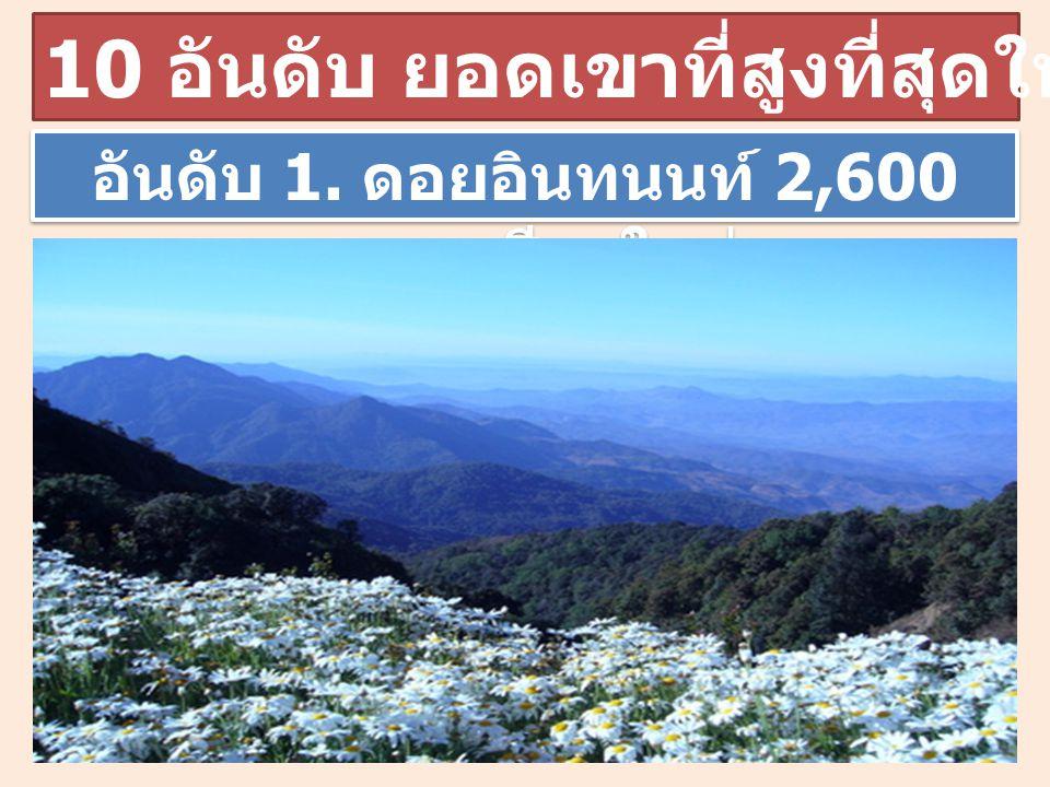 อันดับ 1. ดอยอินทนนท์ 2,600 เมตร เชียงใหม่