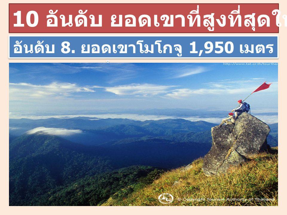 อันดับ 8. ยอดเขาโมโกจู 1,950 เมตร กำแพงเพชร