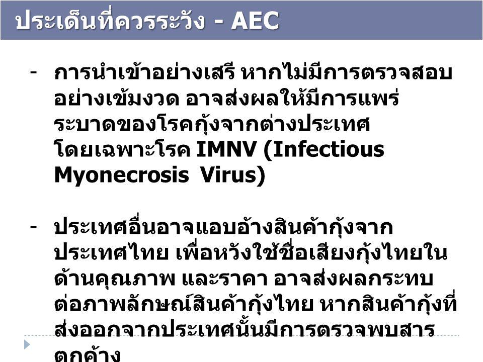 ประเด็นที่ควรระวัง - AEC