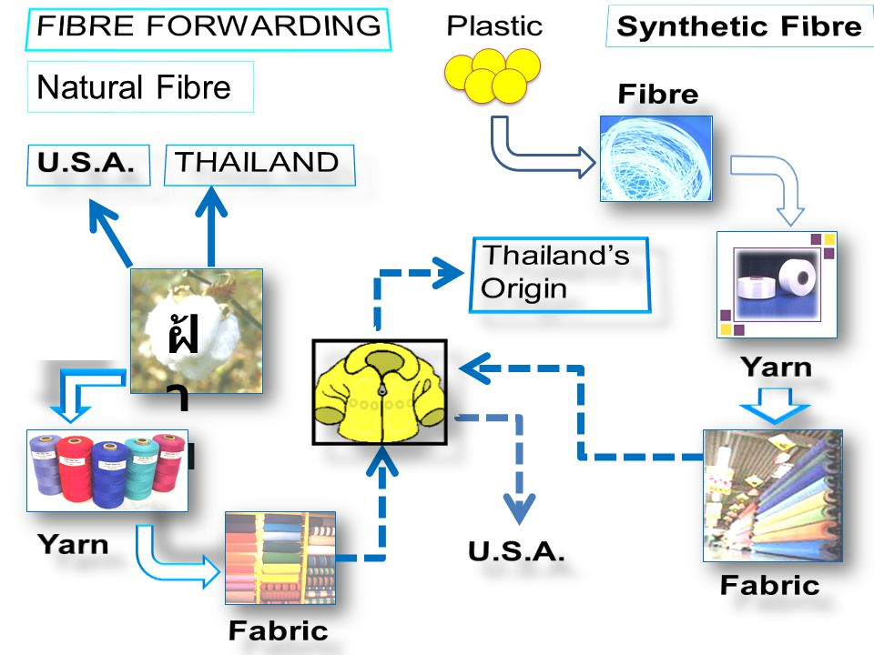 ฝ้าย FIBRE FORWARDING Plastic Synthetic Fibre Natural Fibre Fibre