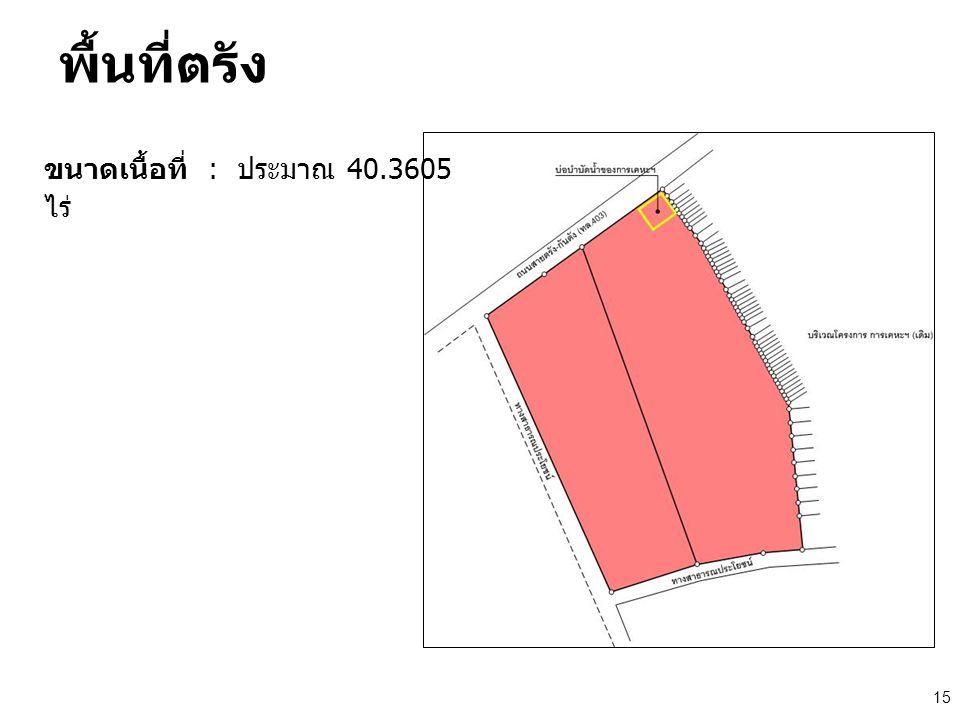 พื้นที่ตรัง ขนาดเนื้อที่ : ประมาณ 40.3605 ไร่ 15