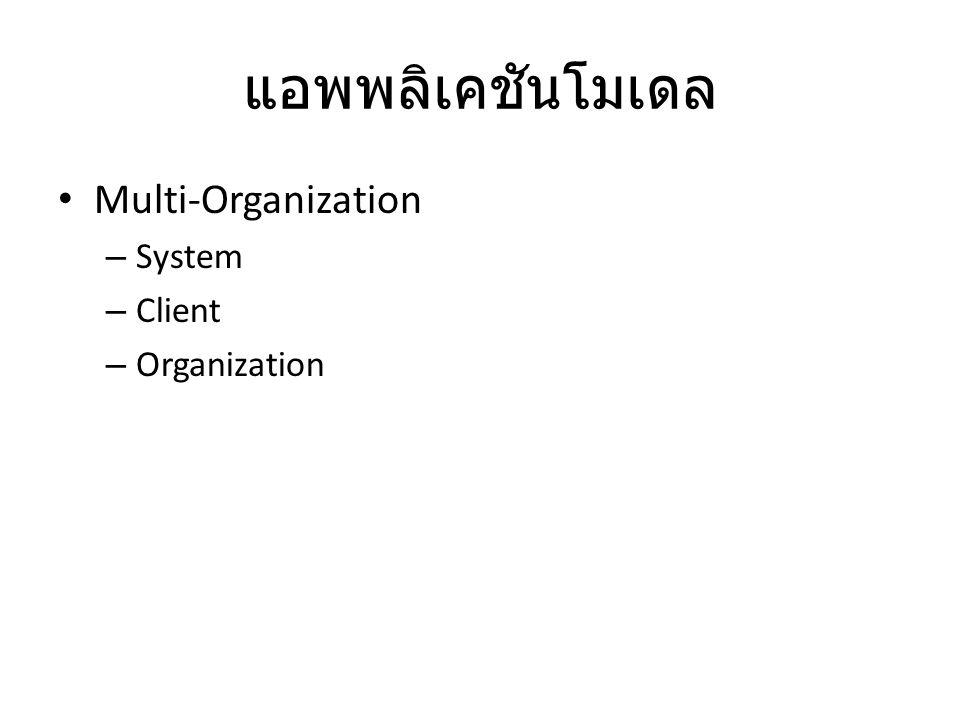 แอพพลิเคชันโมเดล Multi-Organization System Client Organization