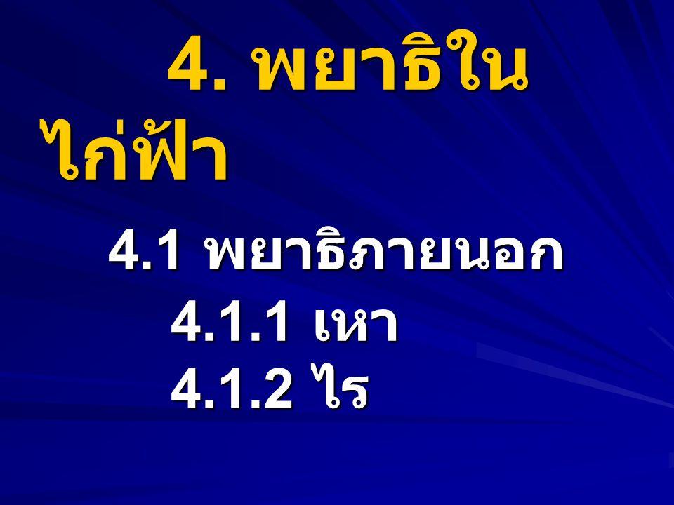 4. พยาธิในไก่ฟ้า 4.1 พยาธิภายนอก 4.1.1 เหา 4.1.2 ไร