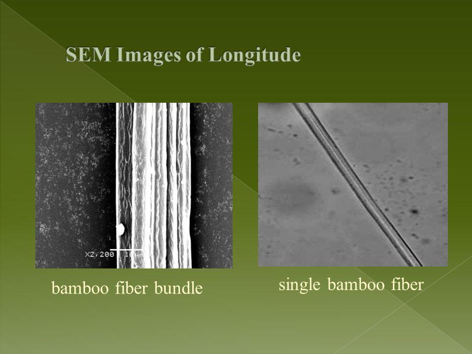 SEM Images of Longitude