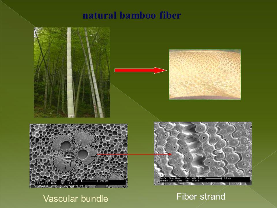 natural bamboo fiber Fiber strand Vascular bundle