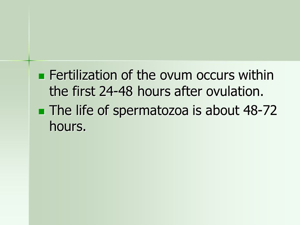 Fertilization of the ovum occurs within the first 24-48 hours after ovulation.
