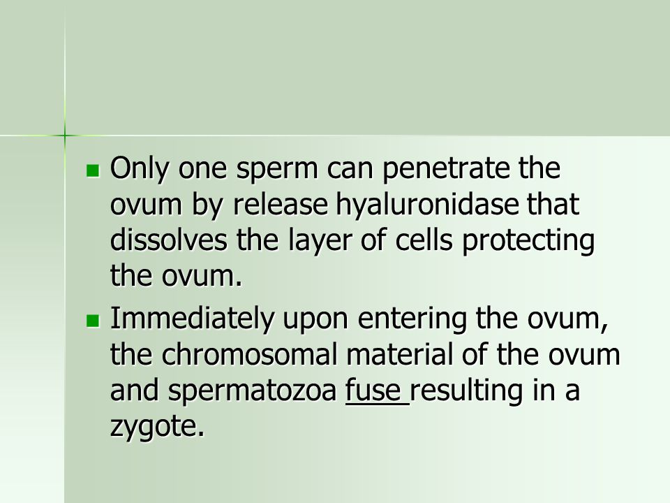 Only one sperm can penetrate the ovum by release hyaluronidase that dissolves the layer of cells protecting the ovum.