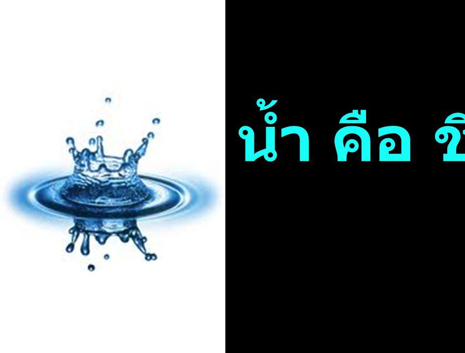 น้ำ คือ ชีวิต