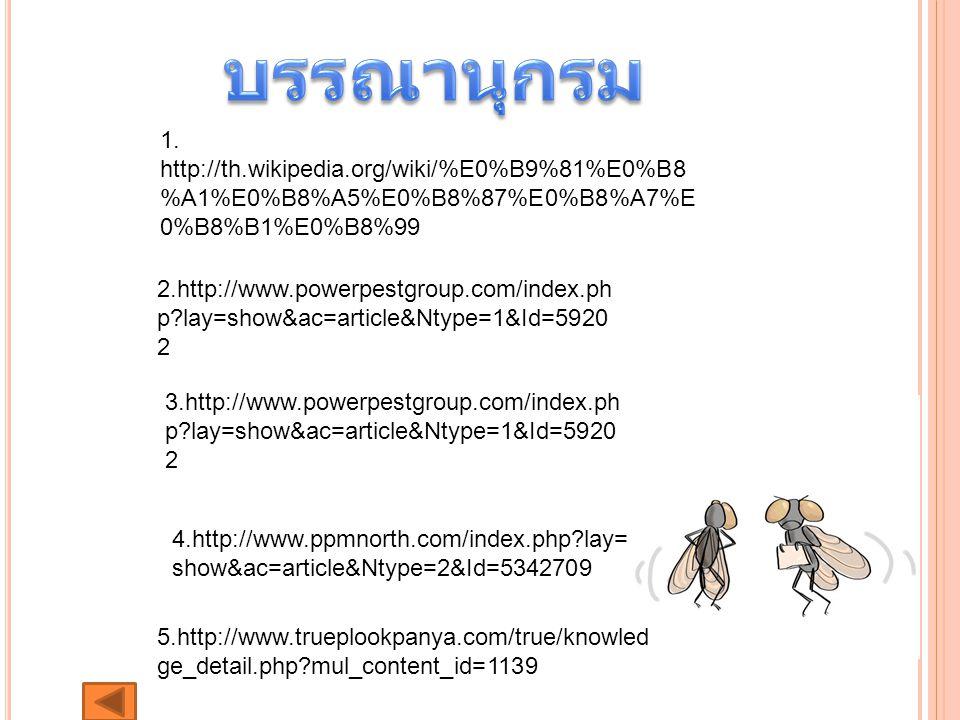บรรณานุกรม 1. http://th.wikipedia.org/wiki/%E0%B9%81%E0%B8%A1%E0%B8%A5%E0%B8%87%E0%B8%A7%E0%B8%B1%E0%B8%99.