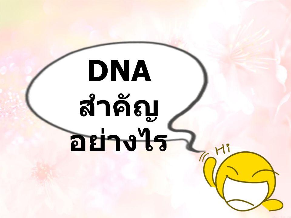 DNA สำคัญอย่างไร