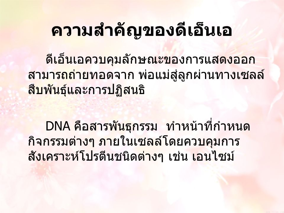 ความสำคัญของดีเอ็นเอ