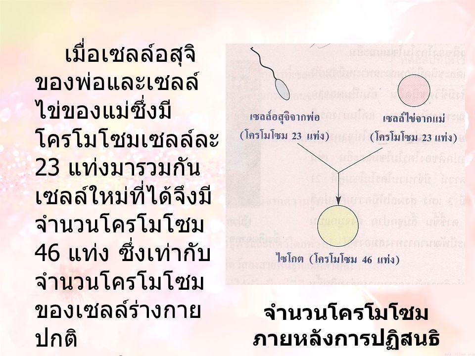 จำนวนโครโมโซมภายหลังการปฏิสนธิ