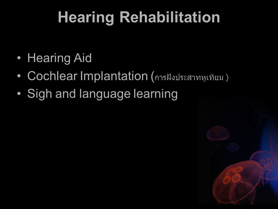 Hearing Rehabilitation