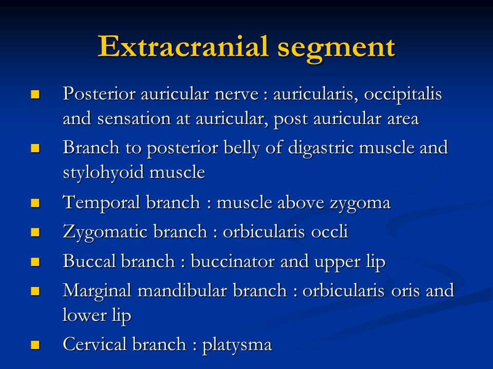 Extracranial segment Posterior auricular nerve : auricularis, occipitalis and sensation at auricular, post auricular area.