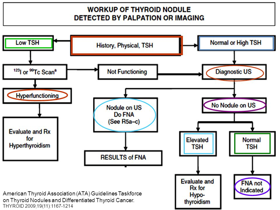 American Thyroid Association (ATA) Guidelines Taskforce