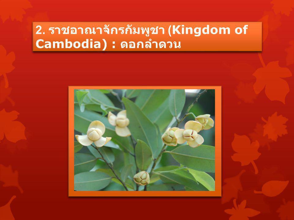 2. ราชอาณาจักรกัมพูชา (Kingdom of Cambodia) : ดอกลำดวน