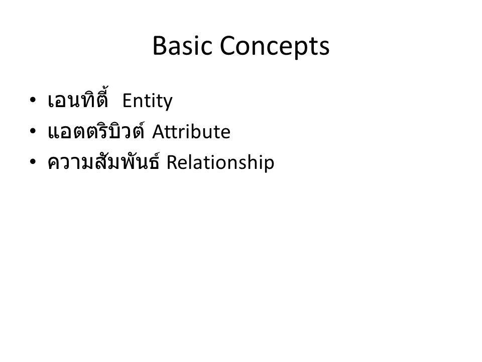 Basic Concepts เอนทิตี้ Entity แอตตริบิวต์ Attribute
