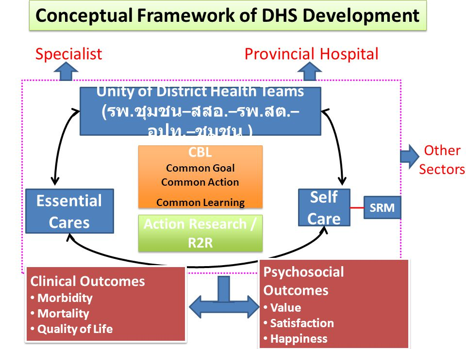 Conceptual Framework of DHS Development