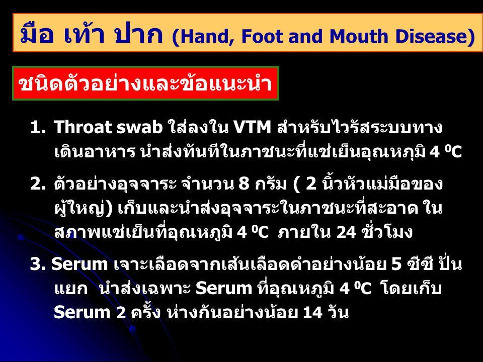 มือ เท้า ปาก (Hand, Foot and Mouth Disease)