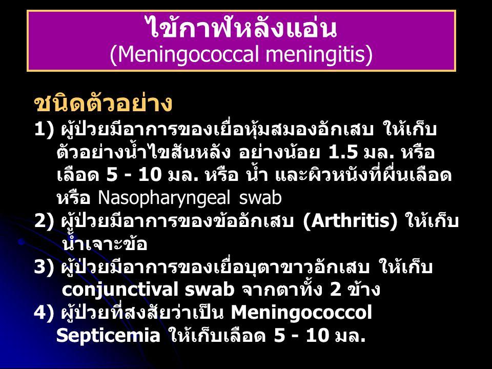 (Meningococcal meningitis)