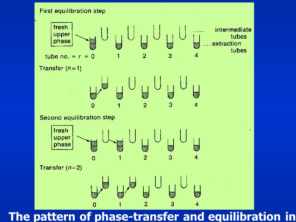 The pattern of phase-transfer and equilibration in countercurrent distribution