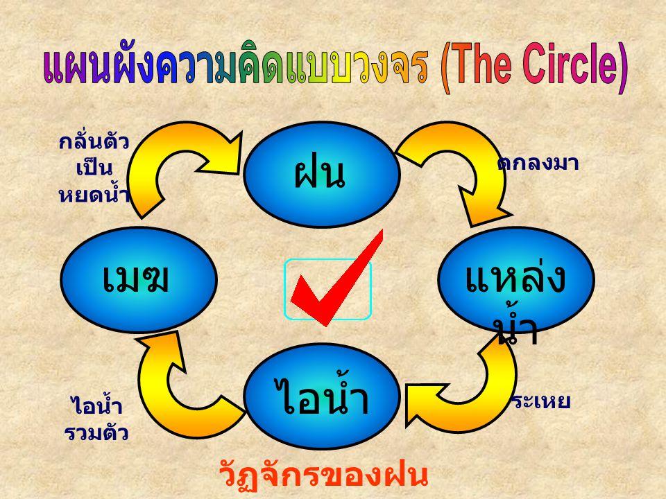 แผนผังความคิดแบบวงจร (The Circle)