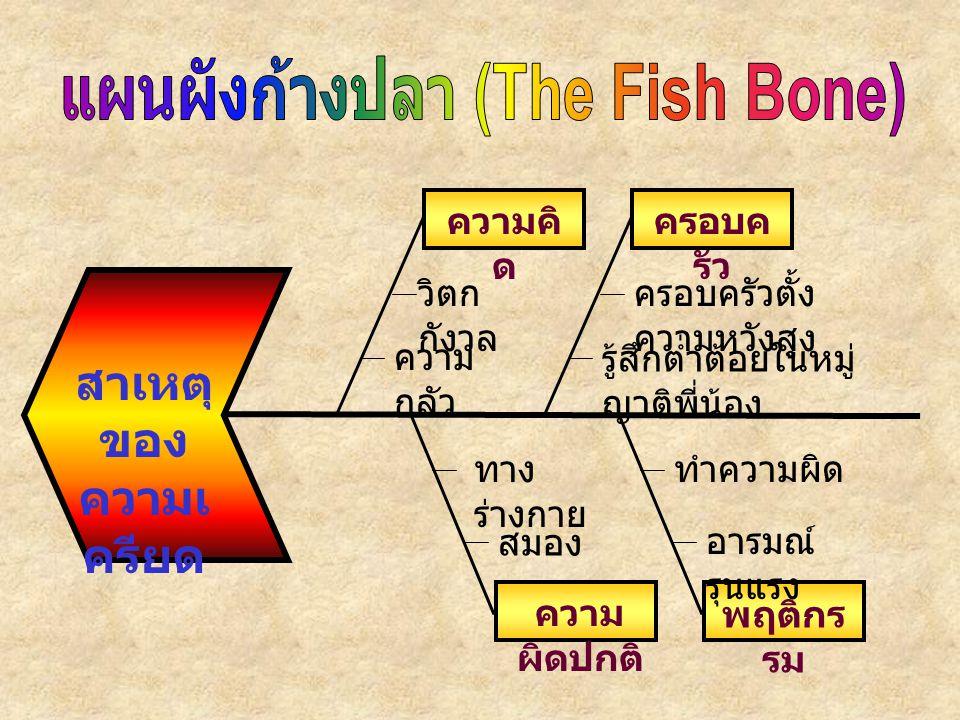 แผนผังก้างปลา (The Fish Bone)