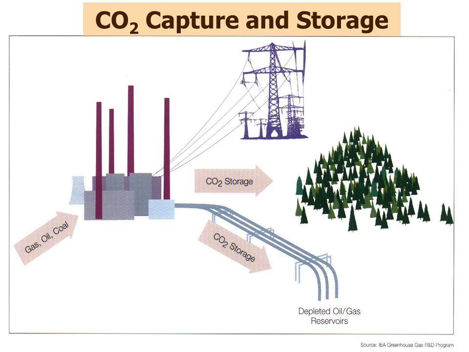 CO2 Capture and Storage