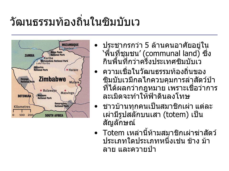 วัฒนธรรมท้องถิ่นในซิมบับเว