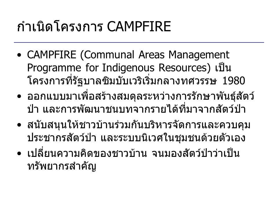 กำเนิดโครงการ CAMPFIRE