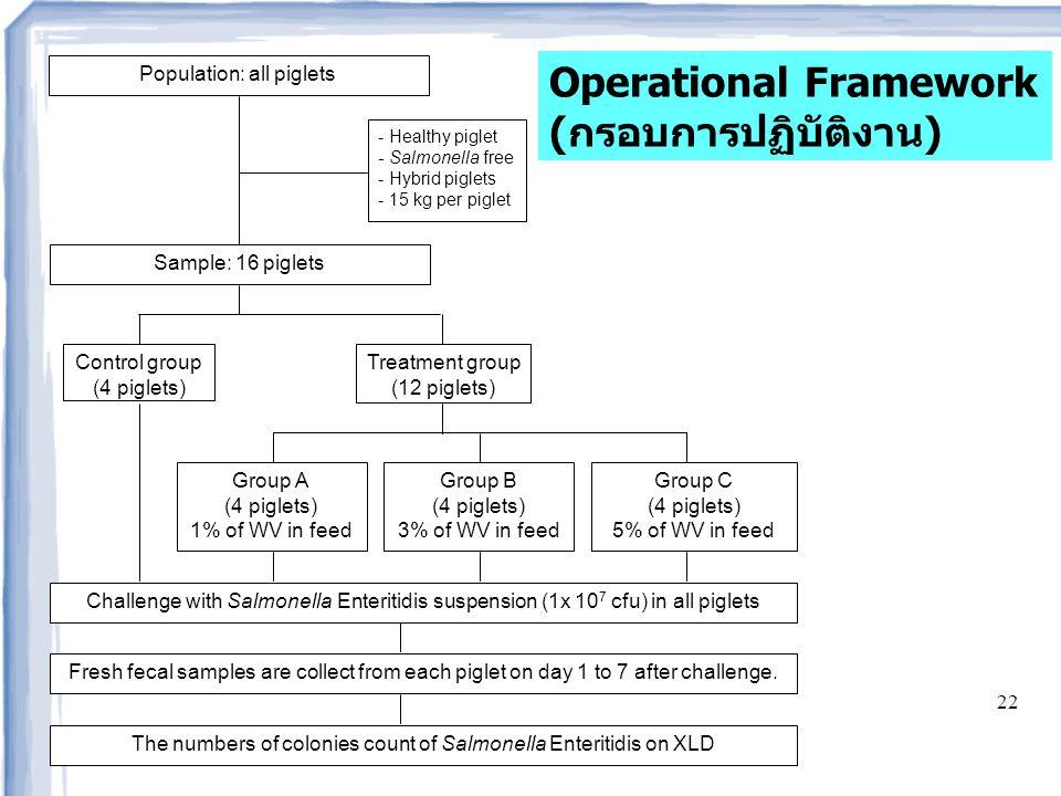 Operational Framework (กรอบการปฏิบัติงาน)