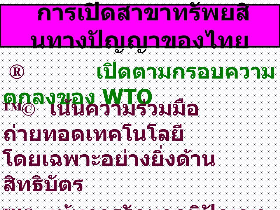 การเปิดสาขาทรัพยสินทางปัญญาของไทย