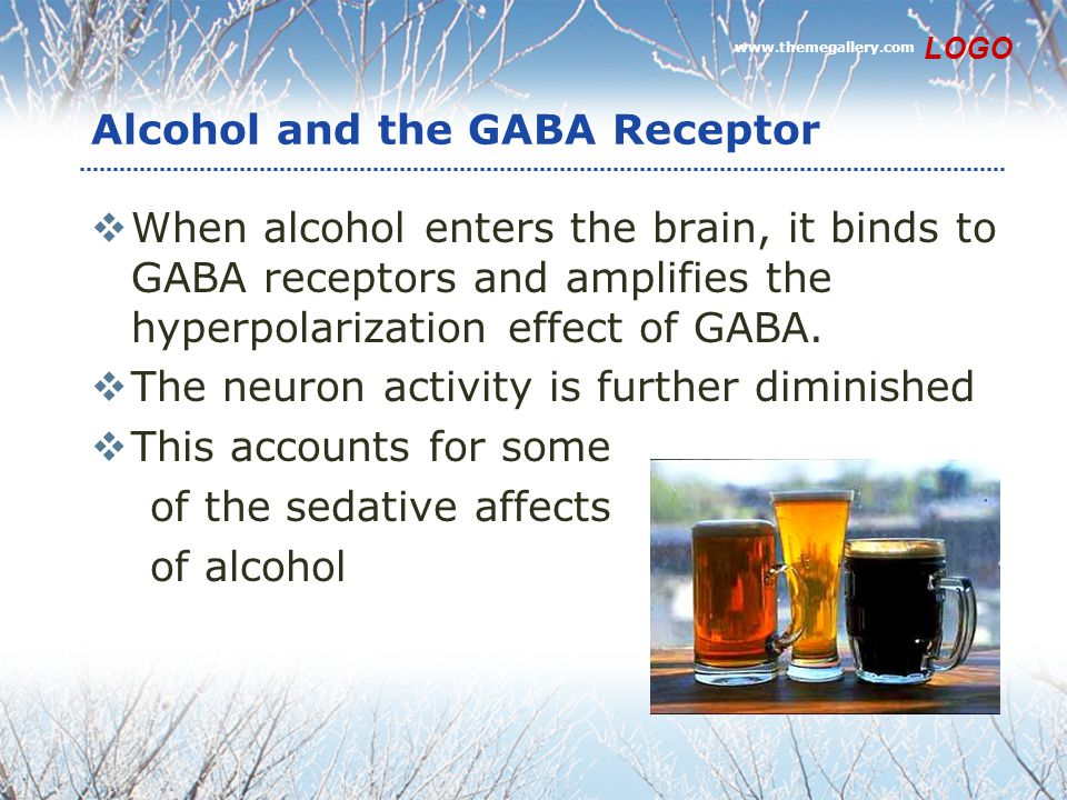 Alcohol and the GABA Receptor