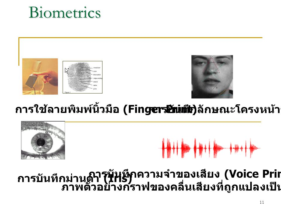 Biometrics การใช้ลายพิมพ์นิ้วมือ (Finger Print)