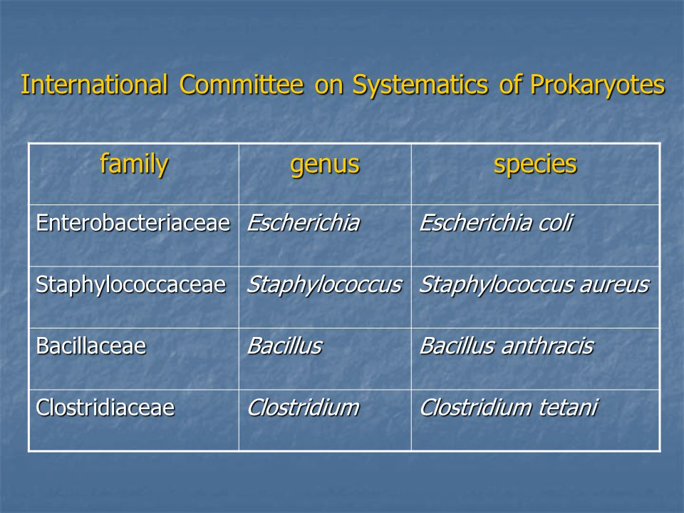 International Committee on Systematics of Prokaryotes