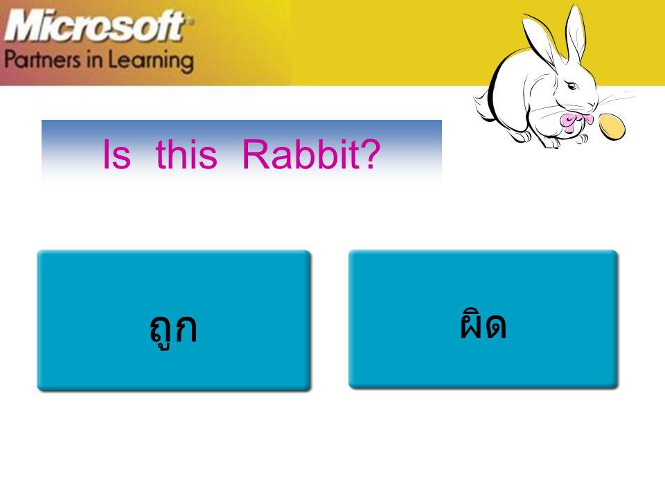 Is this Rabbit ถูก ผิด