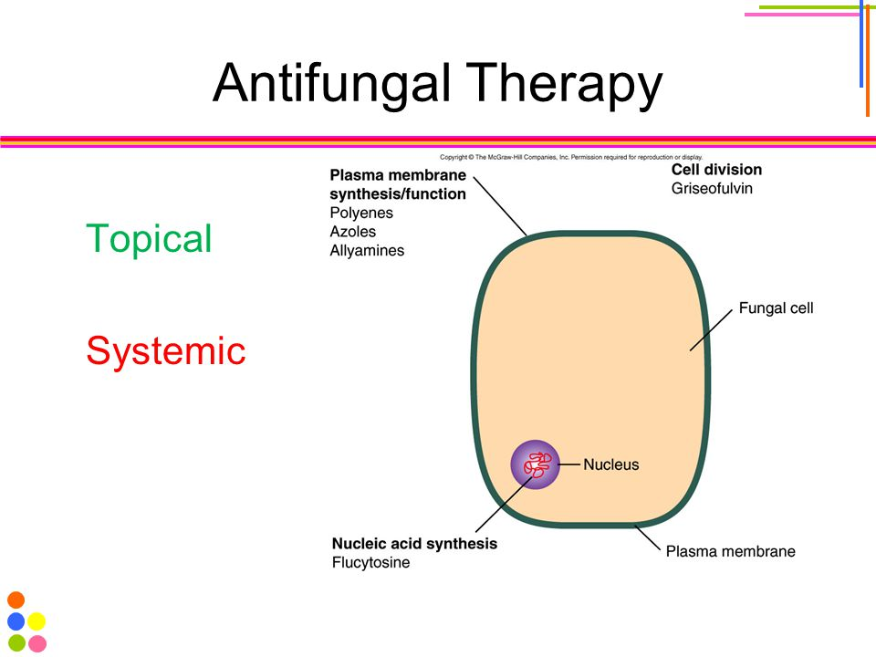Antifungal Therapy Topical Systemic