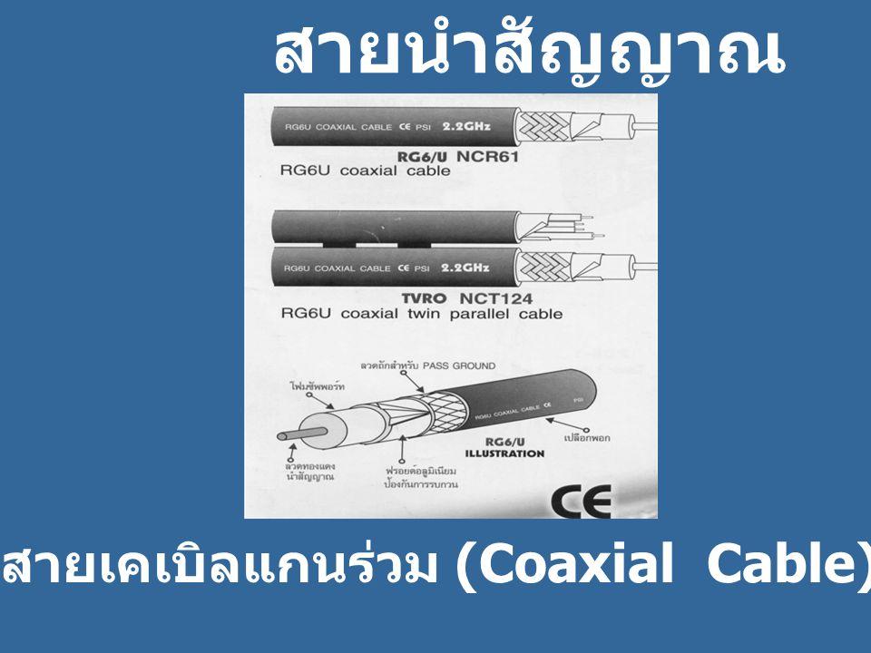 สายเคเบิลแกนร่วม (Coaxial Cable)