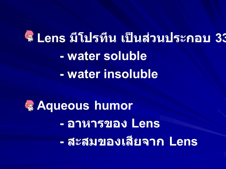 Lens มีโปรทีน เป็นส่วนประกอบ 33%